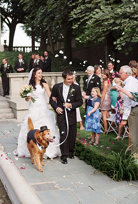 Puppy Love: Incorporating Your Dog Into Your Wedding - Fairly Southern