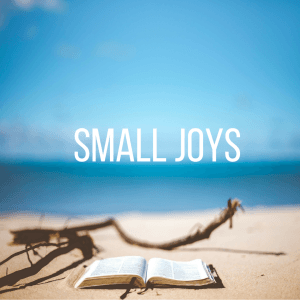 Small Joys: Volume 4 | Fairly Southern