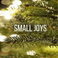Small Joys: Cultivating gratitude for all the small things in life.   Fairly Southern