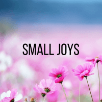Small Joys: Volume 10 | Fairly Southern