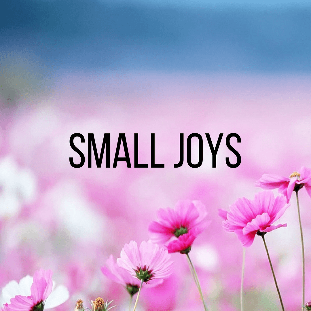 Small Joys: Volume 10
