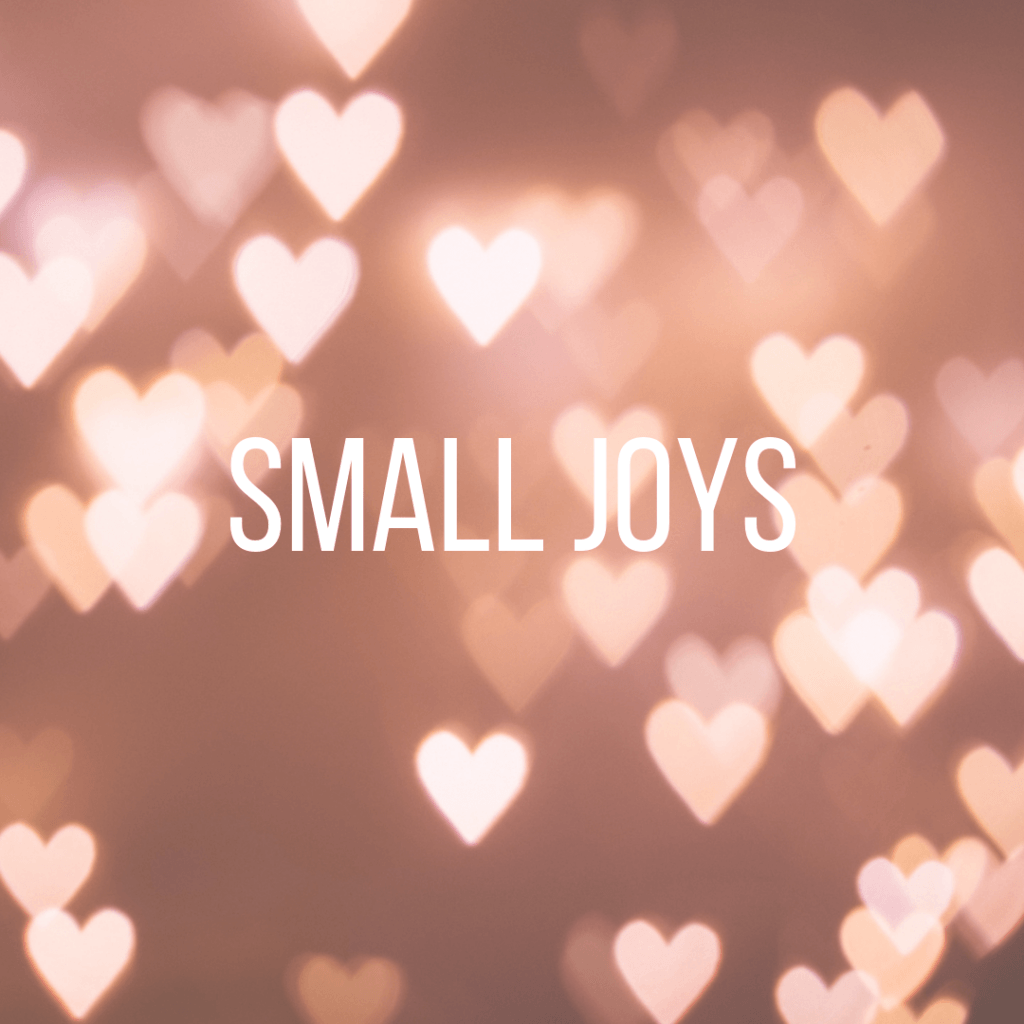 Small Joys: Volume 16  |  Fairly Southern
