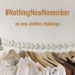 #NothingNewNovember - sustainable fashion challenge, buy no new clothes in November! | Fairly Southern