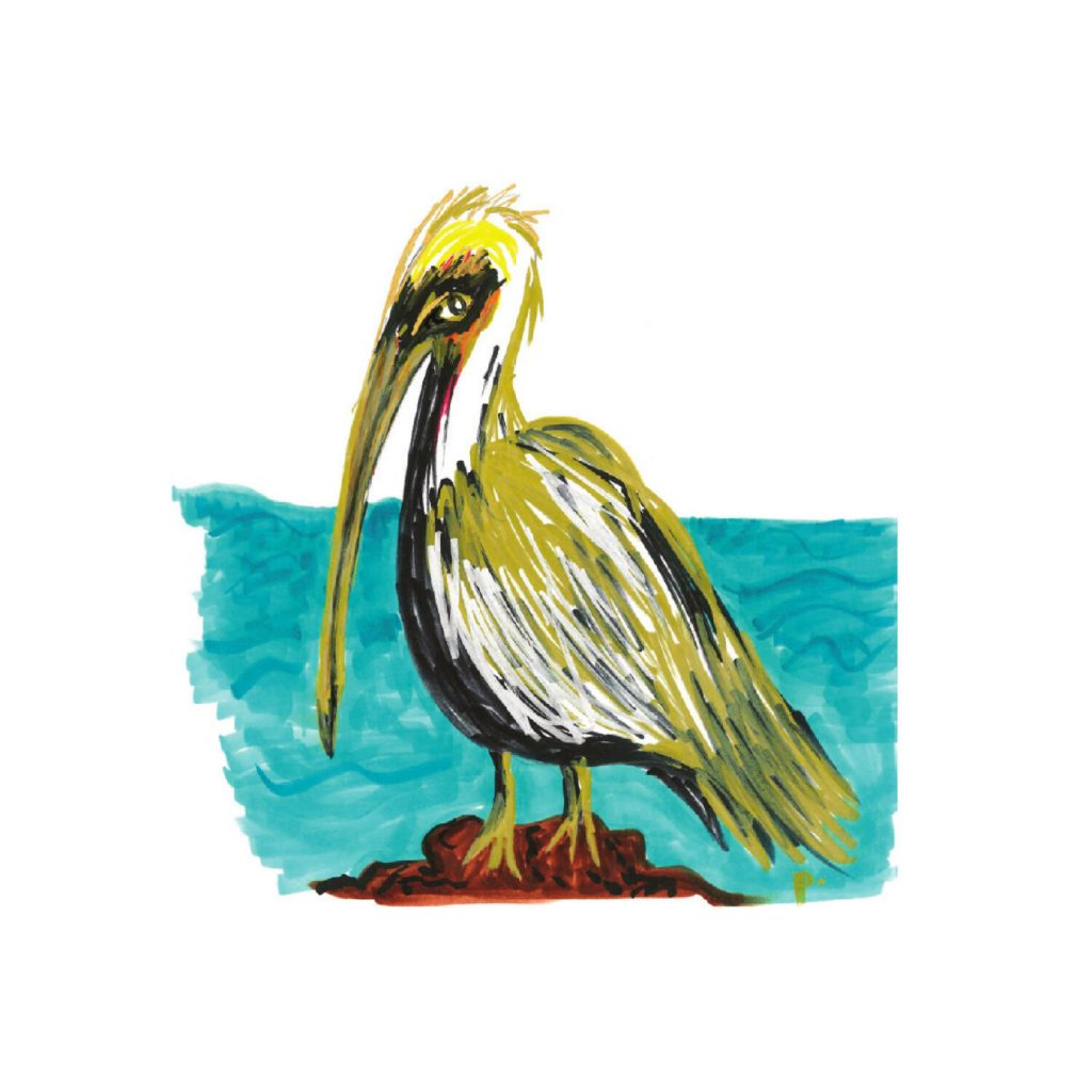 Majestic Pelican painting by sweetp.design   Fairly Southern